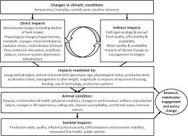 priorities for modelling livestock
