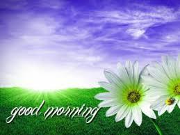 147 good morning images photo