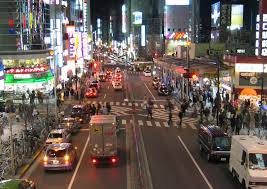 the 10 best kabukicho tours tickets