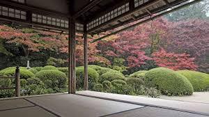 japan trees courtyard zen garden