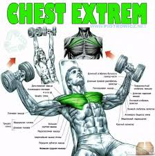 chest extrem fly dumbbell exercise