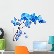 Blue Orchid Flowers Wall Decal Wallmonkeys Com