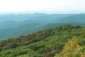 Blue Ridge Mountains In Early Fall From Bearfence Trail In Shenandoah National Park Photograph By Maili Page