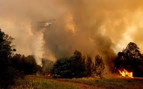 Vast bush fires rip across Australia ...