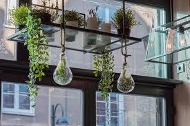 15 eco friendly indoor garden designs