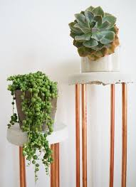 35 captivating diy plant stand ideas