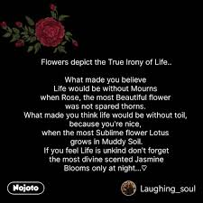 flower sms shayari quotes flowers depict the true nojoto