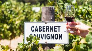 Celebrating Cabernet Sauvignon Virgin Wines Blog