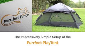 Purrfect Playtent Setup By Purrfect Fence Youtube
