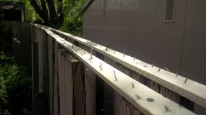 Connolly Tm On Twitter Lethbridgecity Spearmac Thoughts On Anti Cat Spikes My Neighbour Installed On Shared Fence Yql Lethbridge Http T Co 3zlgw2e3hb