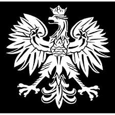 Amazon Com Small White Vinyl Decal Polish Eagle Poland Symbol Sticker Fun Truck Die Cut Decal Bumper Sticker For Windows Cars Trucks Laptops Etc Automotive