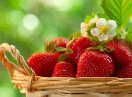 Strawberry Wallpapers For Android Apk Download