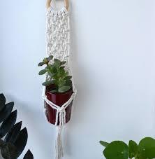 macrame wall hanging mini succulent