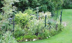Deer Fences Stop Deer From Entering Your Garden
