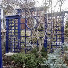 backyard privacy ideas for screening