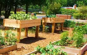 cool cedar raised garden beds designs