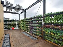 terrace garden with simple steps