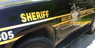 Police Blotter Nighttime Vandals Damage Car Window Mailboxes Tires Oakland Township Mi Patch