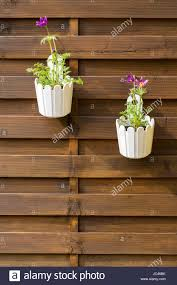 Outdoor Flower Pot Hanging On Wooden Fence For Small Garden Patio Or Stock Photo Alamy