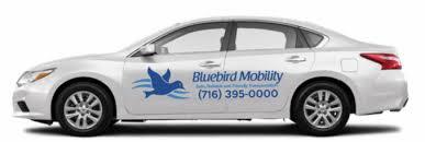 Bluebird Transportation Llc Home Bluebird Mobility