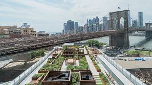 see a rooftop garden in brooklyn