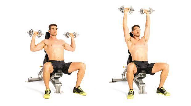 """Image result for Seated dumbbell shoulder press"""""""