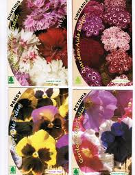 exclusive flower seed packets view