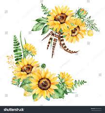 Ilustracion De Stock Sobre Hermosa Coleccion Floral Con Girasoles