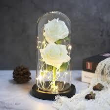 اثنين الورود الجمال والوحش الأحمر روز في الزجاج قبة على قاعدة