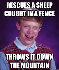 Rescues A Sheep Cought In A Fence Throws It Down The Mountain Bad Luck Brian Quickmeme