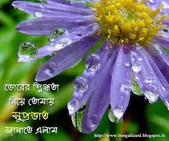 good morning wishes in bengali pictures images
