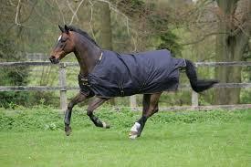 bucas irish lightweight 50g pony