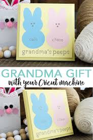 diy grandma gift for spring with your