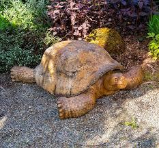 giant gagos tortoise
