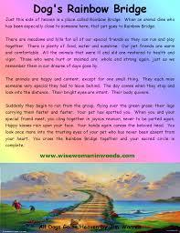 pin by natalie bankowski on dogs rainbow bridge dog poem