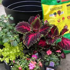 container garden ideas garden ideas
