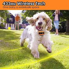1 Dog Wireless Pet Containment System Rechargeable And Waterproof Collar 100 Safe Easy To Install Wifi Radio Dog Fence No Wire No Dig No Bury Large Coverage Area Up To 17 Walmart Canada