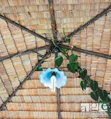 The Hand Made Roof Make Of Natural Product Such As Wood And Nipa Palm Leaf Stock Photo Picture And Low Budget Royalty Free Image Pic Esy 039676357 Agefotostock