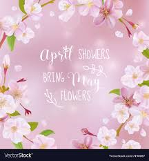 cherry blossom spring card quote royalty vector