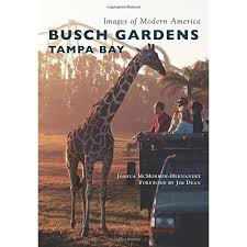 busch gardens tampa bay images of