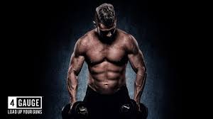 diser 4 gauge muscle booster best
