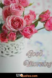 147 beautiful good morning images