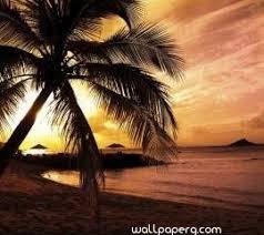 sunset beach hd wallpaper for laptop 2