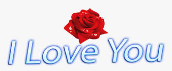 i love you png rose images love you