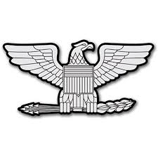 Amazon Com Rank Colonel Eagle Shaped Sticker Silver Insignia Decal Automotive