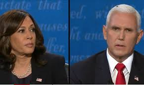A fly at the Harris, Pence debate has internet buzzing