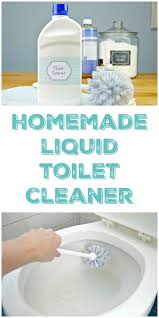 homemade toilet cleaner liquid