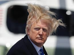Trump's hair blowing during Thursday's high winds in 5 photos, 1 video - Business Insider