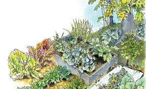 fall vegetable gardening guide