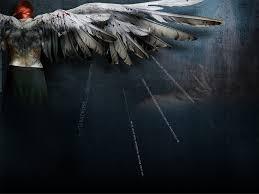 angels wings wallpaper 1024x768